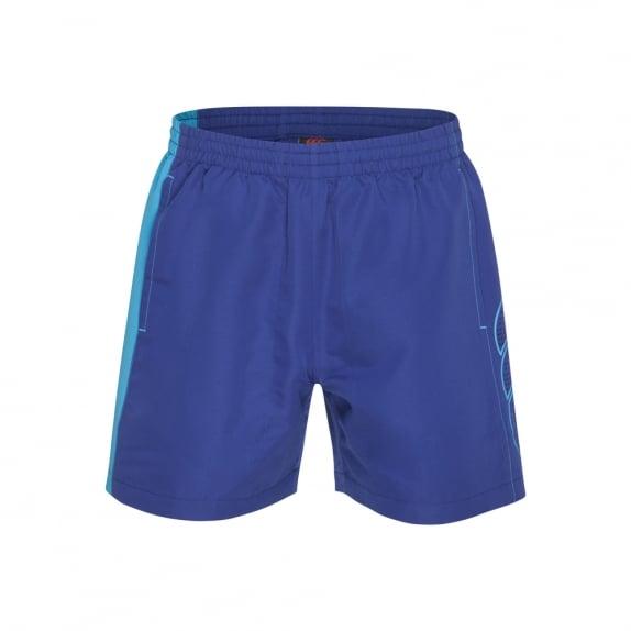 LASER SHORT CLEMATIS BLUE